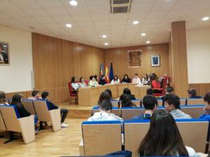 plenari